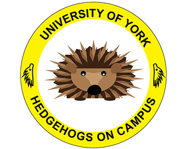 Hedgehogs on Campus thumbnail